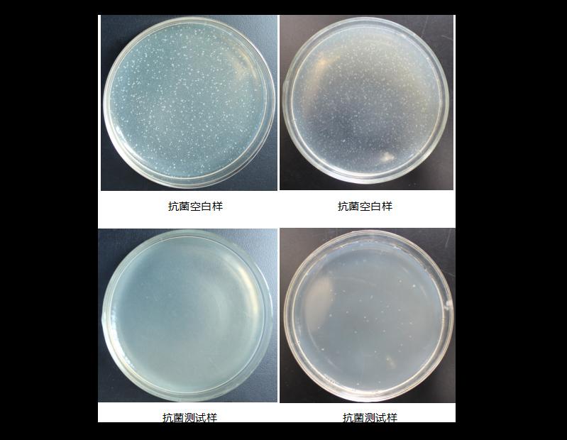 塑料抗菌检测样、空白样